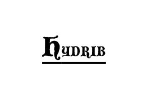 RD-Hybrid